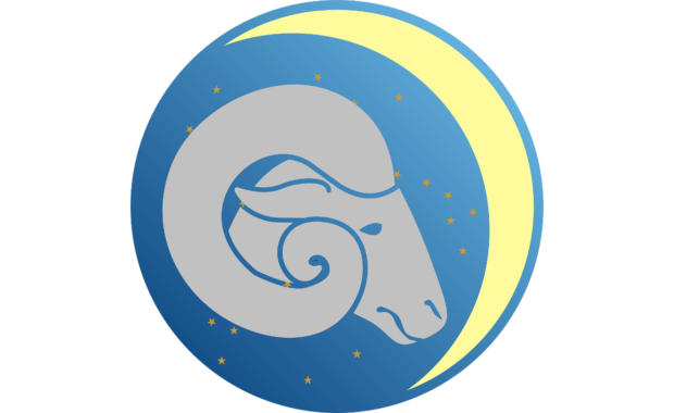 image of sheep head in a blue starry sky with crescent moon