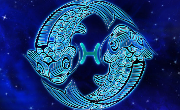 the pisces zodiac symbol of two fish swimming in a circle of a sky of constellation